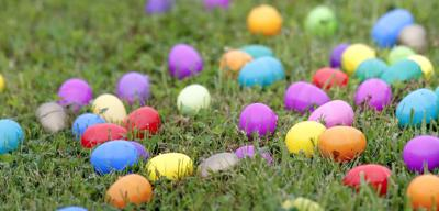 eggs.jpg (copy)