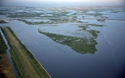 New Orleans sues energy companies, and the Corps studies the city's levees again: This week's coastal news
