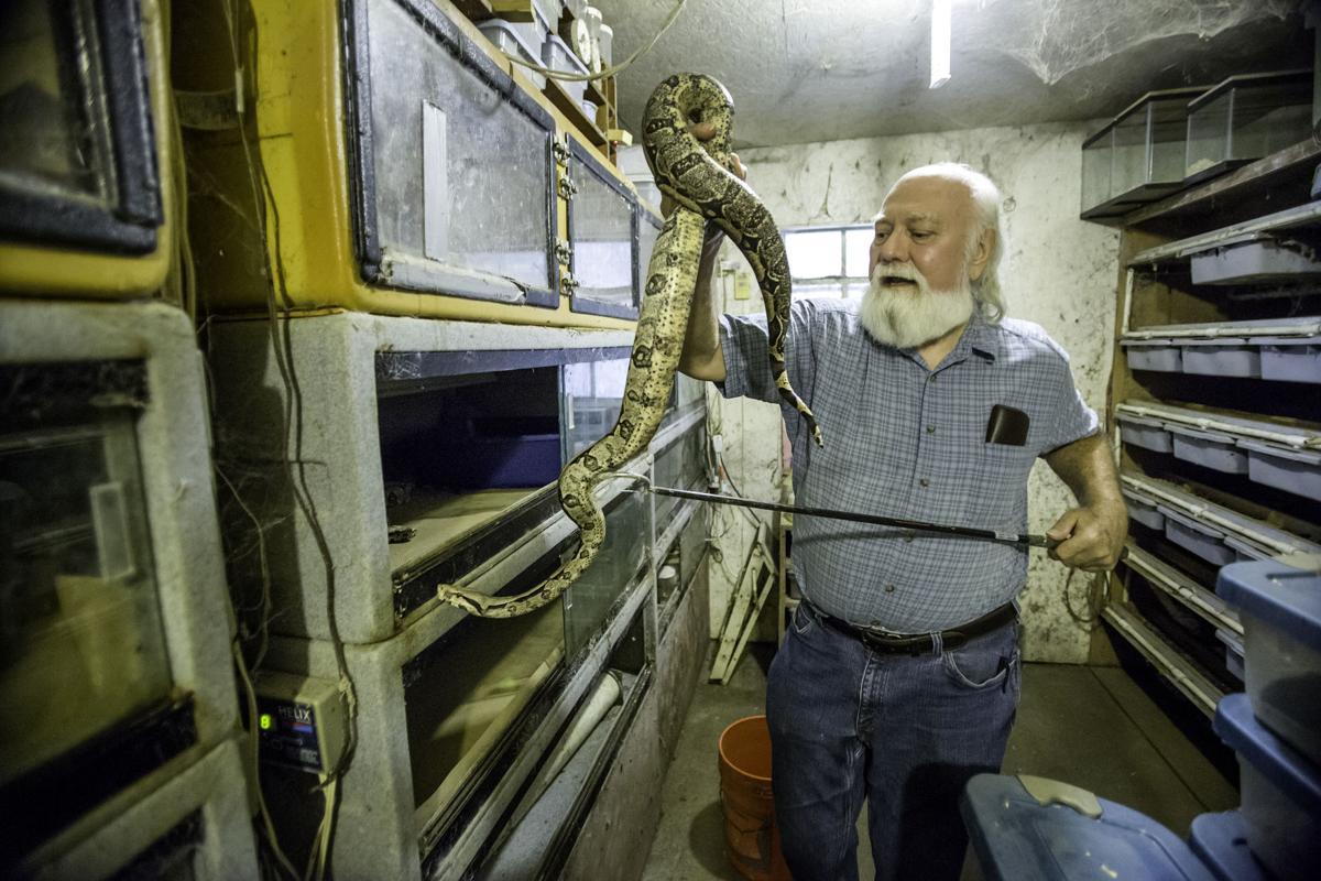 snakes.tam ST 1.jpg