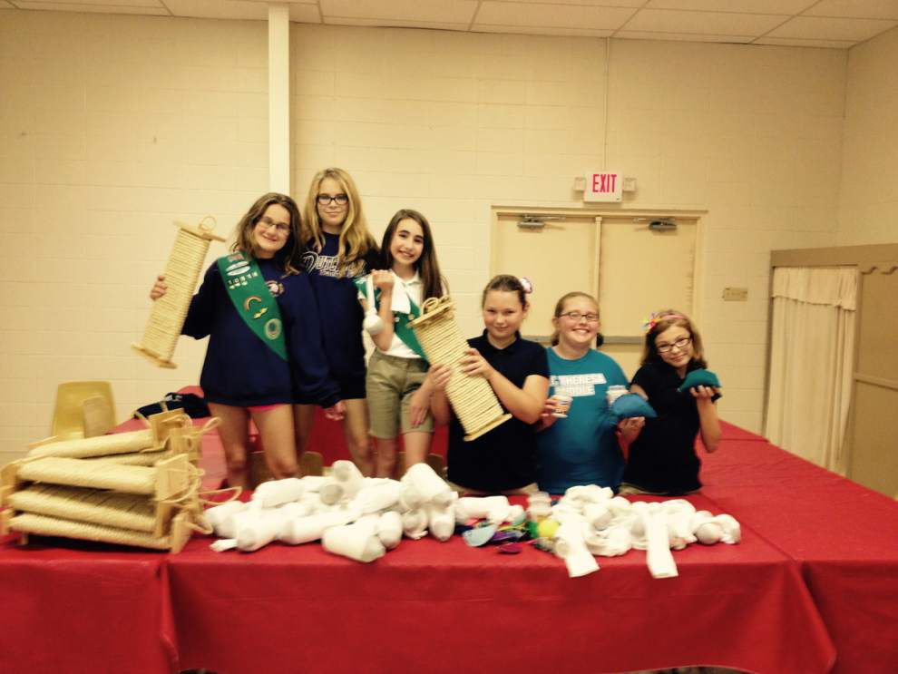 Prairieville Girl Scouts earn Bronze Award _lowres