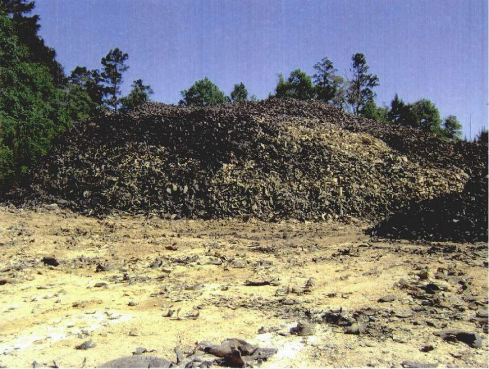 Tangipahoa Parish skirts fines, signs agreement with DEQ over millions of pounds of shredded tires at the landfill _lowres