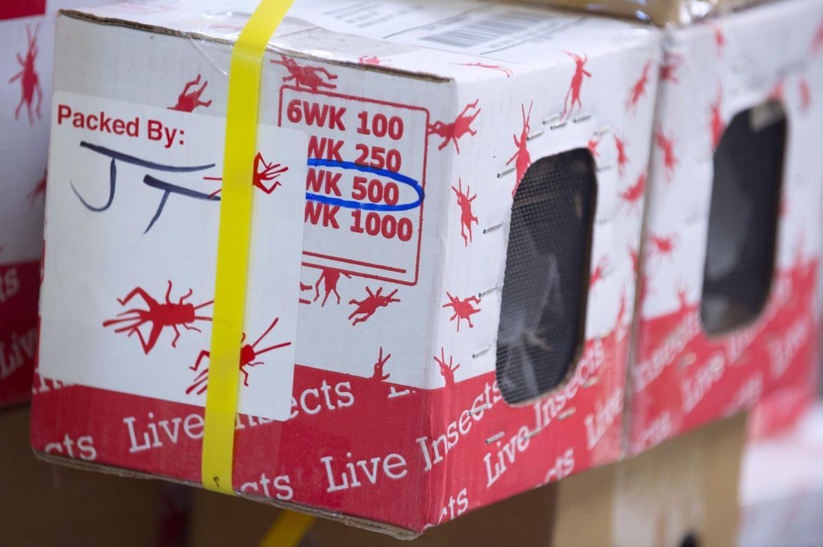 flukerbiz  TS 1040.adv.jpg