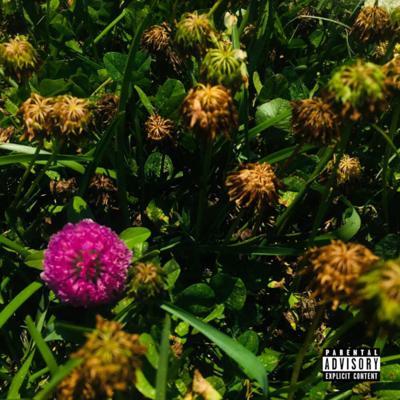 Igmatic album cover