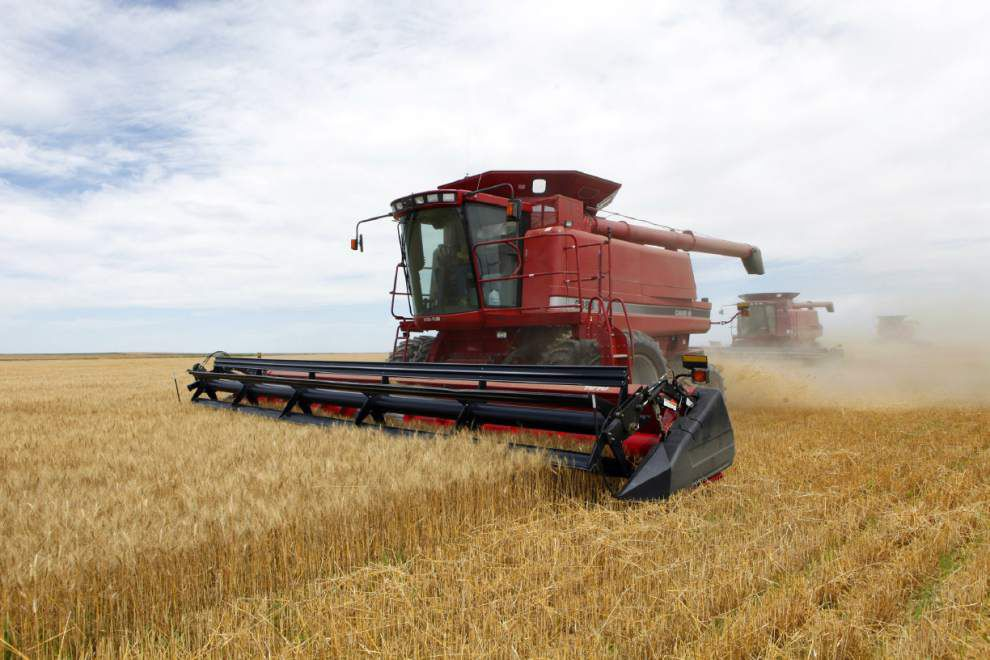 Farm bill deal would cut food stamps by 1 percent _lowres