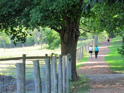 Gilfillan Trail