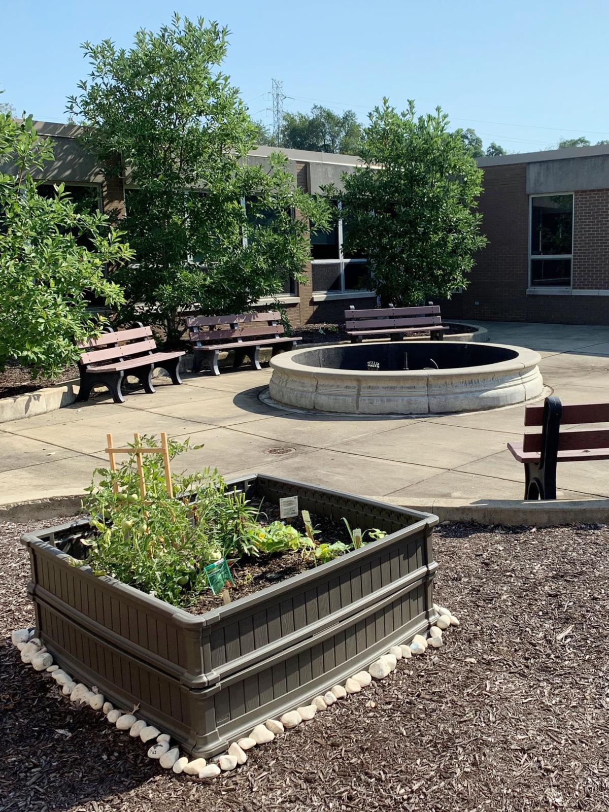 Boyce School garden