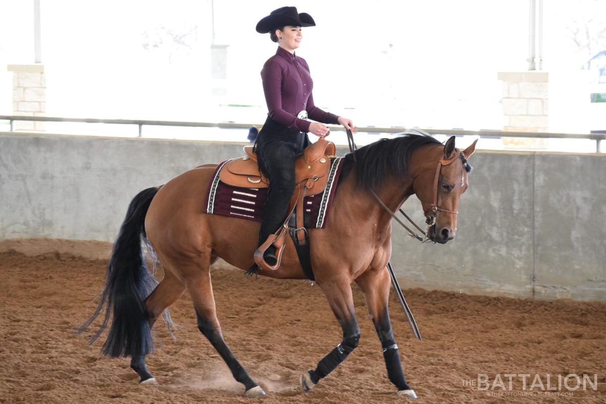 Equestrian vs. South Dakota St.