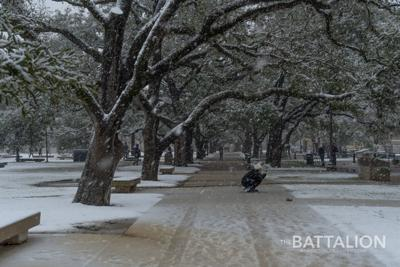 Snow in Aggieland