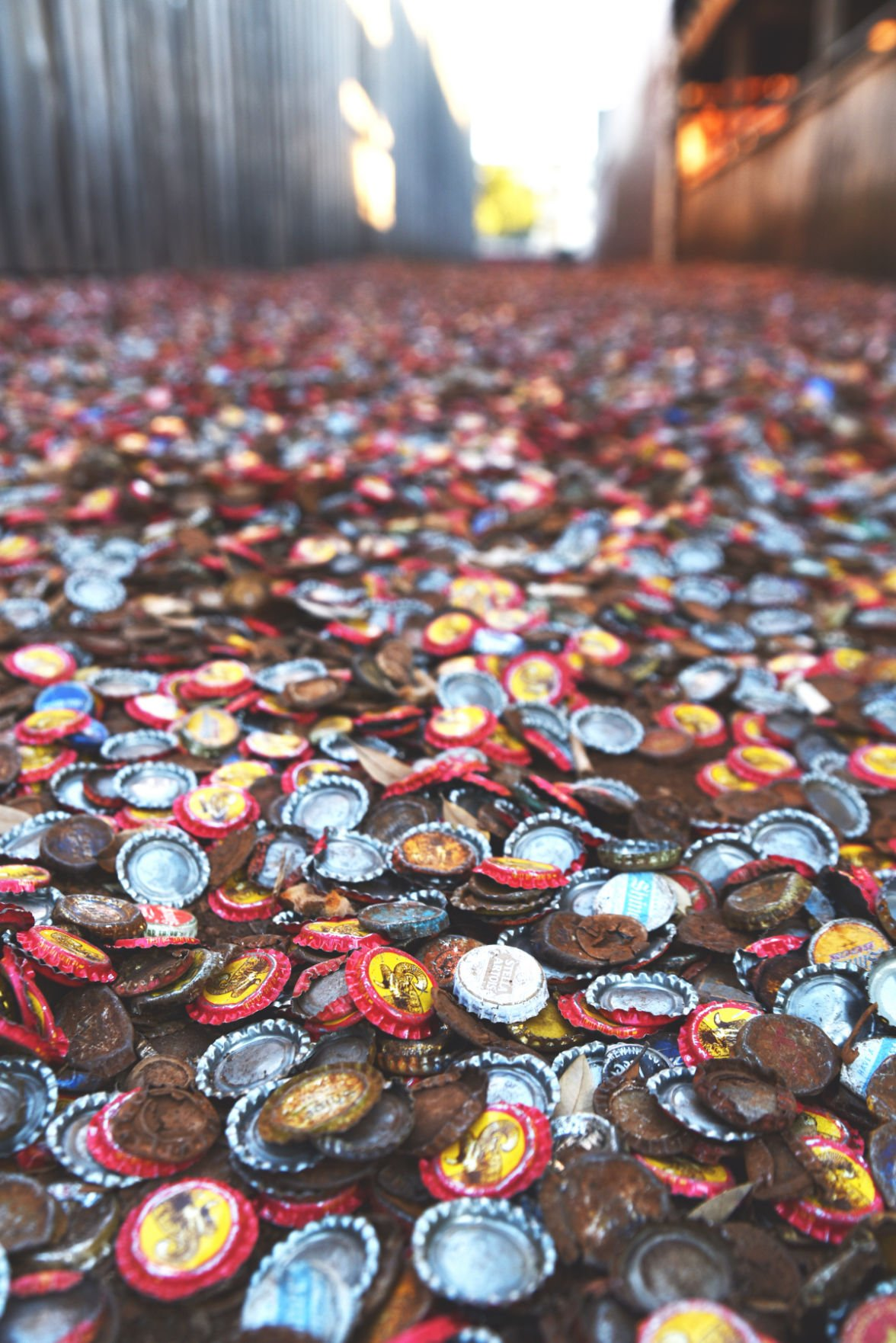 Bottle Cap Alley and The Dixie Chicken