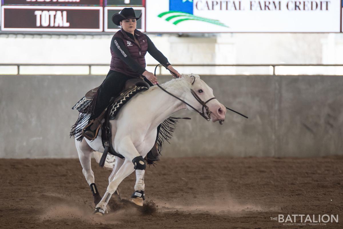 Gallery Equestrian Vs South Carolina Photos Thebatt Com