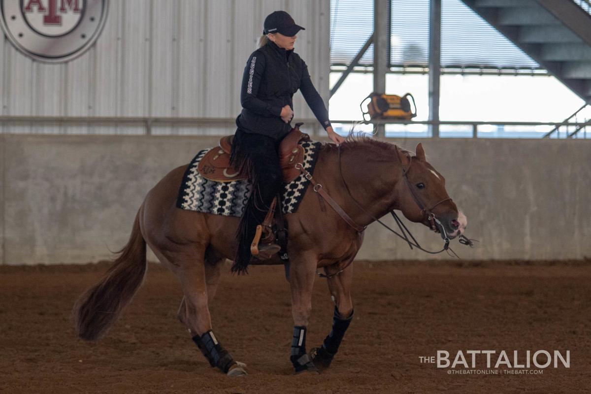 Equestrian vs. Baylor