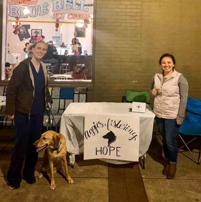 Fostering Hope