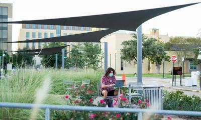 Professors reflect - student studying