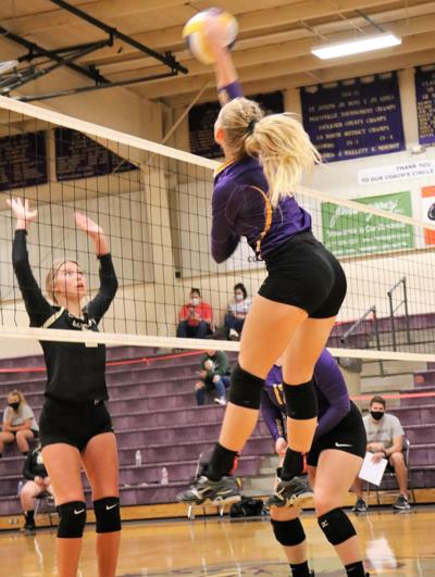 Volleyball Roundup photo
