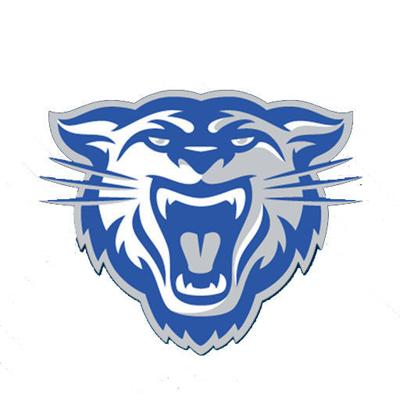 Conway Swim school logo