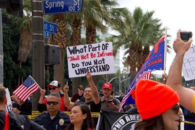 Second Amendment pro gun rally