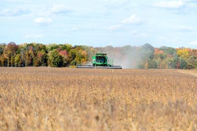 FILE - soybean farmer, harvest