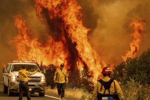 Study: Poor forest management, not climate change, to blame for wildfires