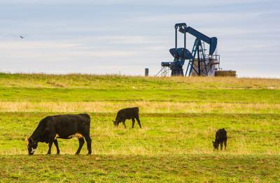 FILE - Oklahoma cattle farm