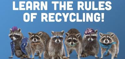 Recycling Raccoons