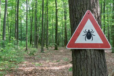 FILE Tick warning