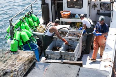 FILE - Maine Lobstermen 8-4-2017