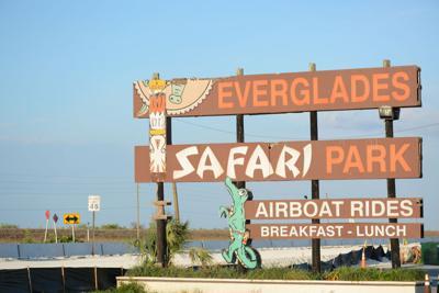 FILE - Florida Everglades