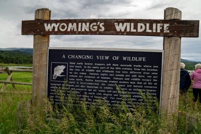Alpine,,Wyoming,-,June,25,,2020:,Sign,For,Wyoming,Wildlife,