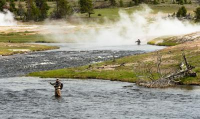 FILE - Fly Fishing Yellowstone National Park