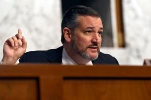 Cruz: Democratic relief bill includes $1,400 checks to non-citizens, incarcerated felons
