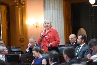 FILE - Ohio state Rep. Diane Grendell