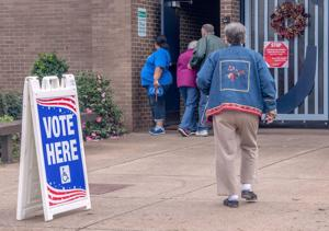 Nine states postpone presidential or congressional primary elections