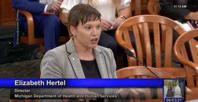 MDHHS director Elizabeth Hertel