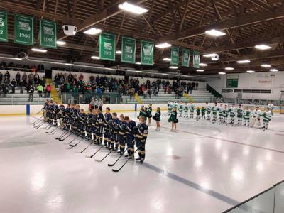 Hermantown Hockey Arena