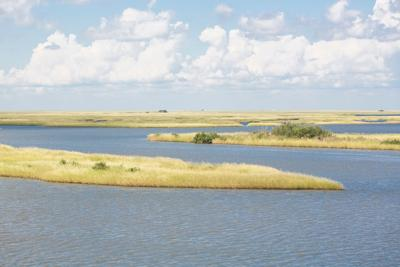 FILE - Louisiana marshland coast