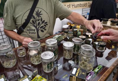 FILE - Marijuana, cannabis, California