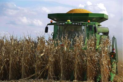 FILE - Illinois corn farm harvest