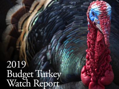 FILE - Florida TaxWatch budget turkey