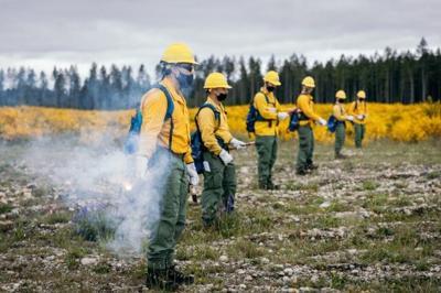 FILE –Washington wild land firefighters