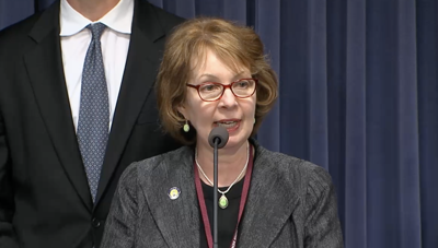 FILE - state Sen. Ann Gillespie, D-Arlington Heights