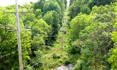 'Bird-eye view' boosts cooperative's reliability