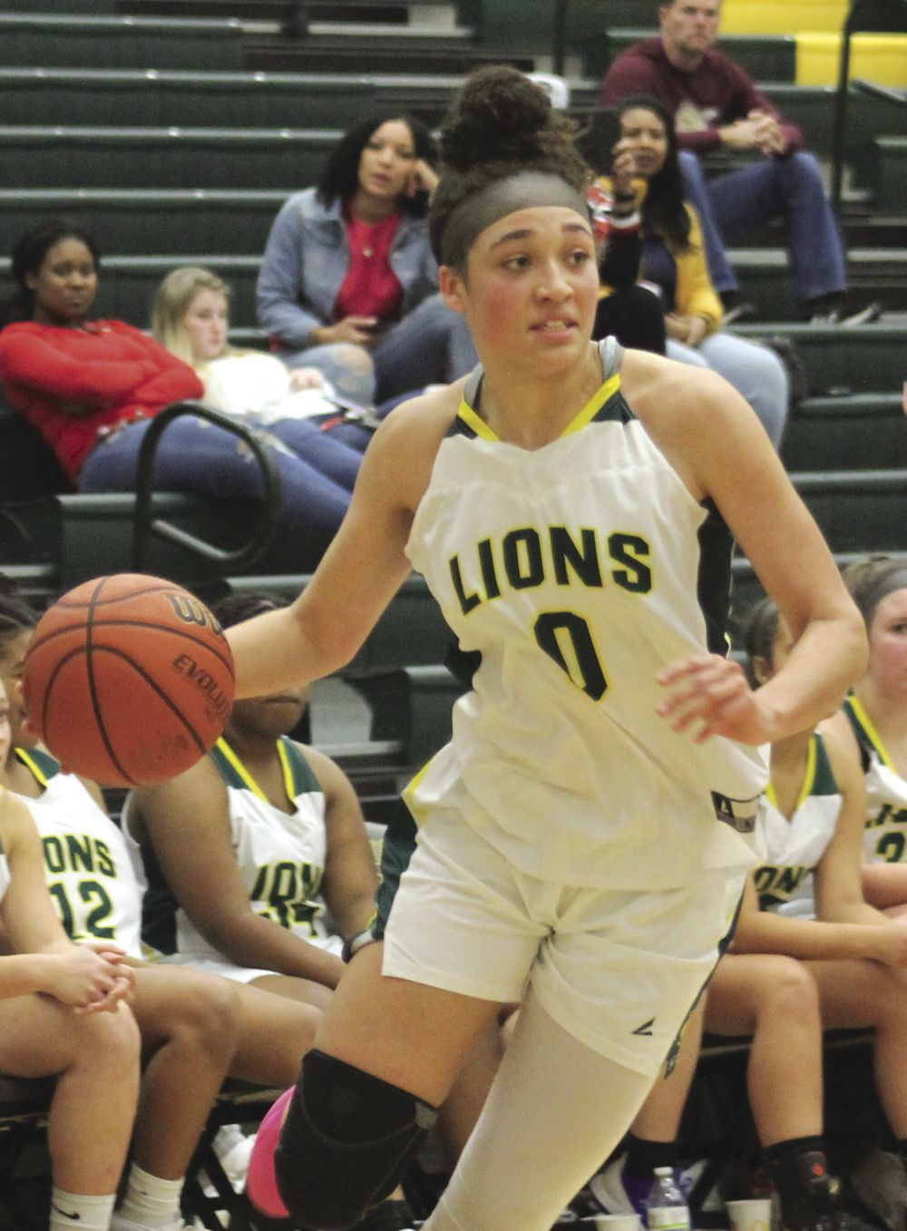Lions named to all-region basketball teams
