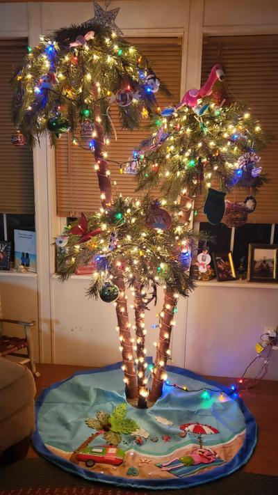 TCV's Christmas Tree Contest participants