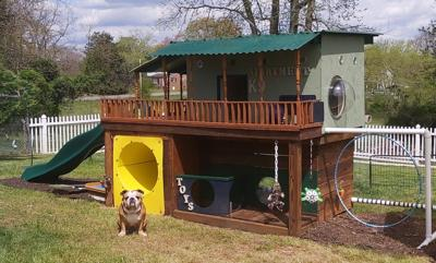 Woman builds deluxe doghouse