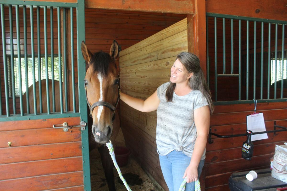 Equine vet, event planner team up at Gordonsville farm