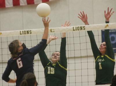 Lions defeat Knights in four sets at home