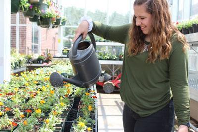 Louisa students harvest their rewards