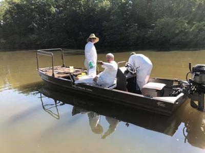 Dye offered to block Lake Anna hydrilla