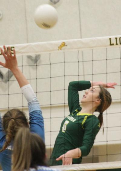 Volleyball splits contests with Western