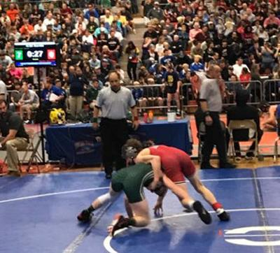 Louisa wrestler places third at state tourney | Local